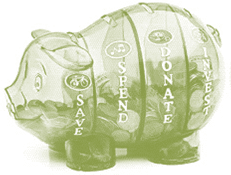 financial literacy - money savvy pig